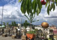 Letošní sezóna na Střeše Lucerny