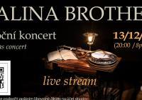 Vánoční koncert Malina Brothers z náchodské knihovny