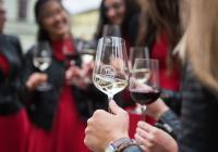 Plzeňský festival vína 2020 / jaro