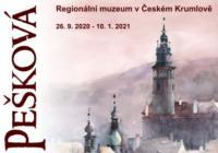 Jana Pešková / Akvarely