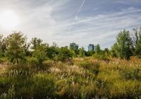 Praha zítra: Rohanský park – online