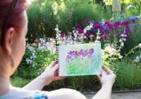 Kreslení v Botanické zahradě