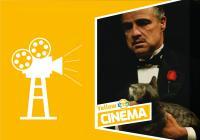 Letní kino Yellow Cinema - Kmotr