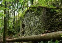 Zřícenina hradu Fredevald (Pustý zámek), Prysk