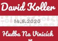 David Koller - Vinařství Lahofer Znojmo - Hudba na vinicích