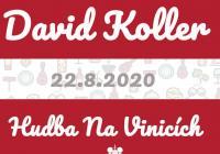 David Koller - Vinařství Chateau Valtice - Hudba na vinicích