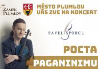 Pavel Šporcl