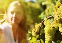 Lázeňské vinobraní