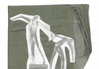 Dominik Lang / Anamnéza jednoho místa