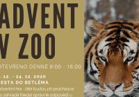 Štědrý den v Zoo Hodonín
