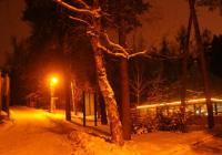 Zoo Olomouc od prosince otevřena