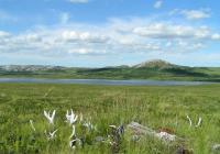 Etnoarcheologie - Pastevci sobů ze severozápadní Sibiře