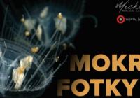 Mokré fotky Michala Černého