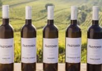Degustace Vinařství Pastorek