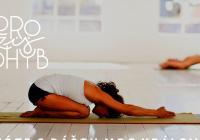 Workshop - Jak zkvalitnit prožitek v jógových pozicích