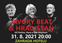 Jiří Pavlica, Hradišťan & Hana a Petr Ulrychovi, Javory Beat