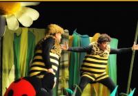 LIVE stream - Příběhy včelích medvídků