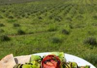 Slavnosti tykve v Levandulovém údolí