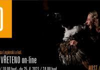 LIVE stream - Spáčka a vřeteno