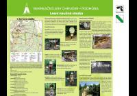 Lesní stezka Podhůra - Current programme