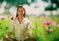Letní meditace v zahradě Lidových sadů