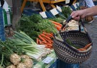 Farmářské trhy - Roudnice nad Labem