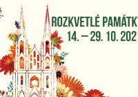 Rozkvetlé památky Olomouc