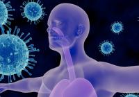 Imunita z pohledu psychosomatiky