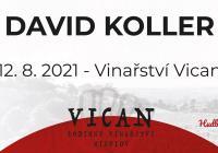 David Koller - Vinařství Vican Mikulov - Hudba na Vinicích