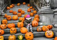 Halloween v Zoo Zlín