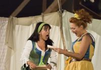 Letní shakespearovské slavnosti - Veselé paničky windsorské