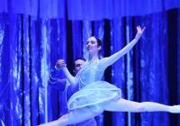LIVE stream -  Taste Ballet Ostrava (Baletní hostina z Ostravy!)