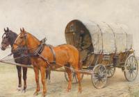 Kůň pohledem památkové péče