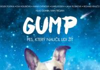 Letní kino - Gump - pes, který naučil lidi žít