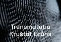 Kryštof Brůha / Transmutatio / Pragovka Gallery POP-UP