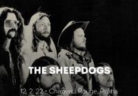 The Sheepdogs v Praze