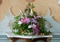 Živá krása květů a sušených plodů