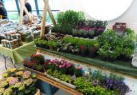 Farmářské trhy - Nová Louže - Nákupní galerie v Ústí nad Orlicí