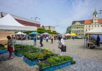 Farmářské trhy v Teplicích
