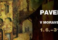 Dernisáž výstavy Pavla Čecha
