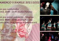 Flamenco pro začátečníky