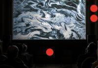 Michal Kindernay: Phonotropic Blidness / Prague Biennale