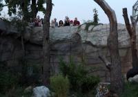 Večerní komentované prohlídky - Zoo Hluboká nad Vltavou