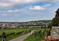 Krajem vína - letní putování okolím Modrých Hor
