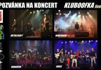 Koncert - Kluboofka family