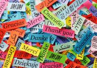 Jak se jazyky učí profesionálové | Webinář