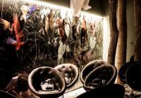 Muzejní noc - Virtuální expedice Zoo Brno