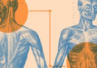 Radkin Honzák: Střevní mikrobiom a celý střevní mozek | Webinář