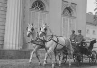 Výstava Starokladrubský kůň – historie dvorního hřebčína Kladruby nad Labem