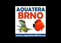 Aquatera Brno